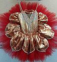 Пошив балетных пачек и шопенок, фото 5