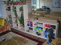 Мебель в детском саду - шкаф живой природы