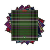 Тетрадь общая ученическая ErichKrause Scottish Cage (48 листов, линейка)