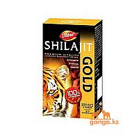 Мумие с Золотом и Шафраном Шиладжит (Shilajit Gold&Kesar DABUR), 20 кап.