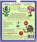 Настольная игра: Эволюция. Трава и грибы, фото 4