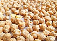 Нут алтайский для проращивания, 500 грамм