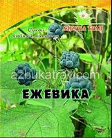 Ежевика, побеги 30 гр