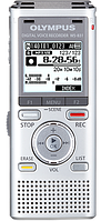 Диктофон Olympus WS-831-E1-SLV 2GB