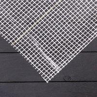 Плёнка полиэтиленовая, армированная, 2 x 10 м, толщина 200 мкм, белая