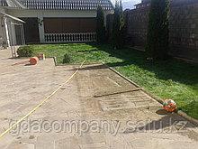 Устройство газона в Алматы