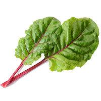 Бейби листья Мицуна красные