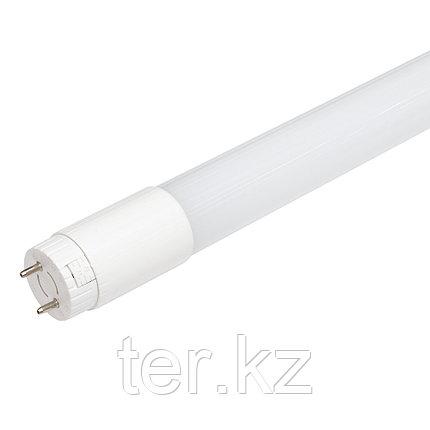 Лампа светодиодная T8 цоколь G13 стекло 9W 6500К 600мм. LED, фото 2