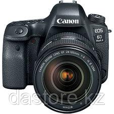 Canon EOS 6D Mark II + EF24-105 f/4L IS II USM, фото 2