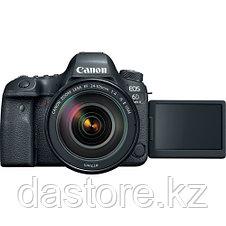 Canon EOS 6D Mark II + EF24-105 f/4L IS II USM, фото 3