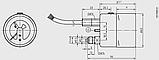 Прибор контроля плотности газа (GDM) Модель 233.52.063 с газовым заполнением, фото 2