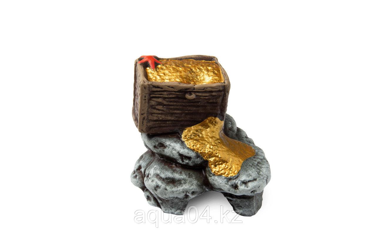Сундук с золотом (ГротАква)