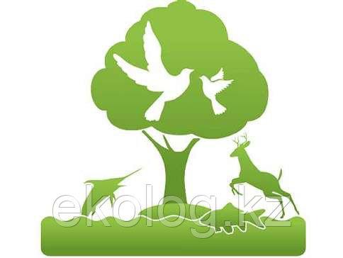 Получение Разрешения на эмиссию в окружающую среду