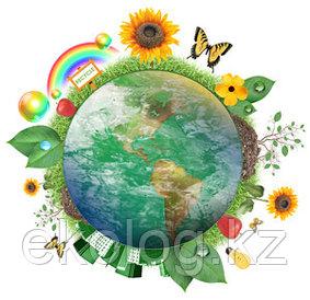 Составление и согласование программы (план) мероприятий по охране окружающей среды
