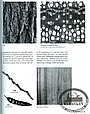 Книга *With The Grain: A Craftsman's Guide to Understanding Wood*, Christian Becksvoort, фото 2