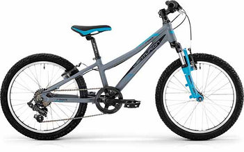 Велосипед Centurion Bock 20 matt dark