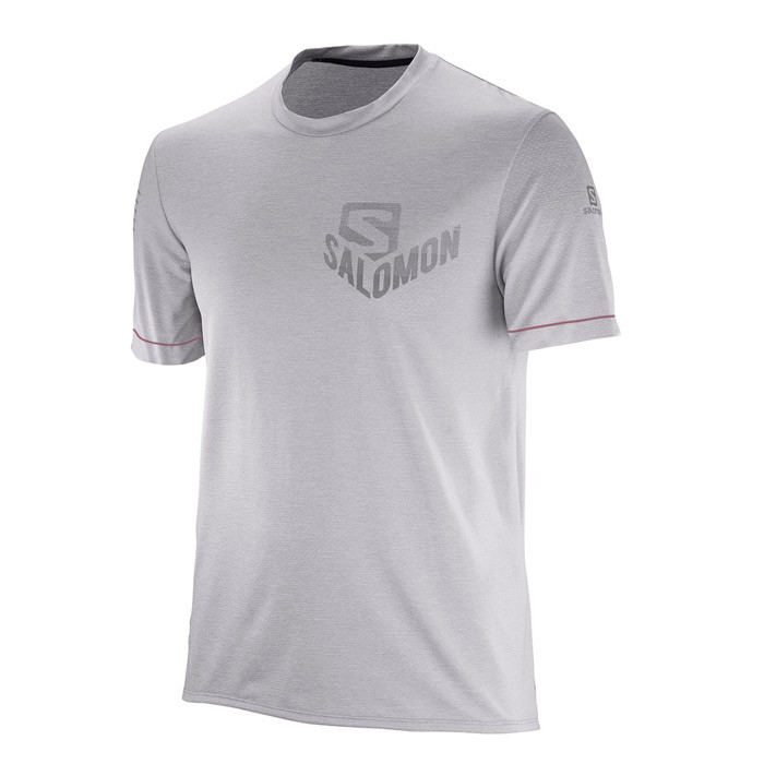 Salomon  футболка  мужская Pulse