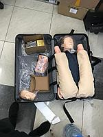 Тренажер Имитатор СЛР манекен с имитацией пульса, GD, фото 3
