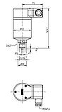 Реле плотности газа (GDS) Модель 851.52.063 HS, фото 2