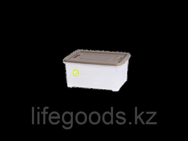 "Контейнер ""Smart Box""  0,8л. ""Practice"" (прозрачный/какао/какао) 190114025, фото 2"