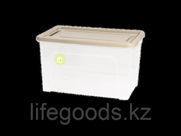 "Контейнер ""Smart Box""  3,5л. ""Practice"" (прозрачный/какао/какао) 190114027, фото 2"