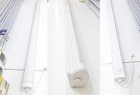 Светильник влагозащитный SSP PROM 1200mm 36w-3600lm, фото 1