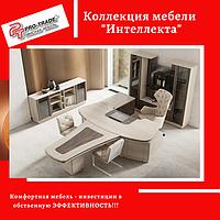 Коллекция мебели Интеллекта