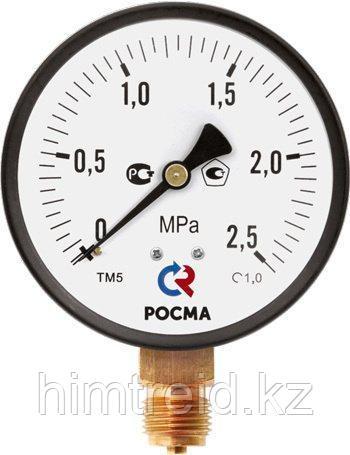 Манометр Росма Тип ТМ (ТВ, ТМВ), серия 10 ,Манометр ТМ-310,ТМ-510,ТМ-610 с повышенным классом точности