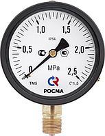 Манометры Росма ТМ серии 10,ТМ-510 IP54,ТМ-610 IP54,Манометры с повышенной пылевлагозащищенностью, Монометр