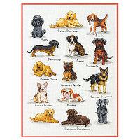 35353-70-DMS Набор для вышивания Dimensions 'Породы собак'