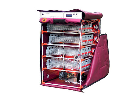 Инкубатор (на 160-180 яиц) с увлажнителем, с автоматическими лотками переворота яиц и выводными лотком, фото 2
