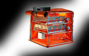 Инкубатор для гусей Mini Goose 56, фото 2