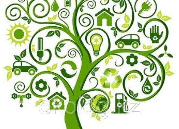 Получение Заключения государственной экологической экспертизы по проектам, фото 2
