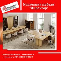 Коллекция мебели Директор