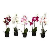 Искусственное растение в горшке, Орхидея разные цвета, IKEA ИКЕА ИКЕЯ