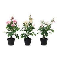 Искусственное растение в горшке, Роза различные растения, IKEA ИКЕА ИКЕЯ
