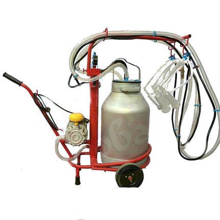 Доильный аппарат для коз Белка-2, фото 2