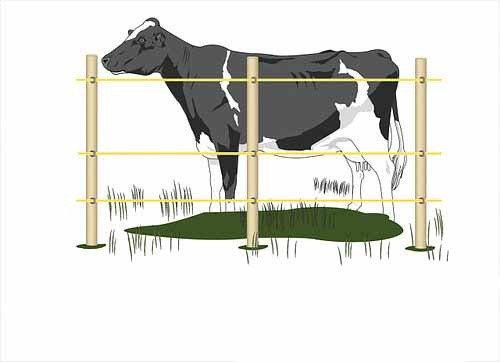 Электропастух для коров (комплект на 500 м.), фото 2