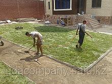 Укладка рулонного газона в Алматы