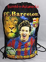 Сумка под обувь,с футбольной символикой.Высота 49 см, ширина 36 см., фото 1