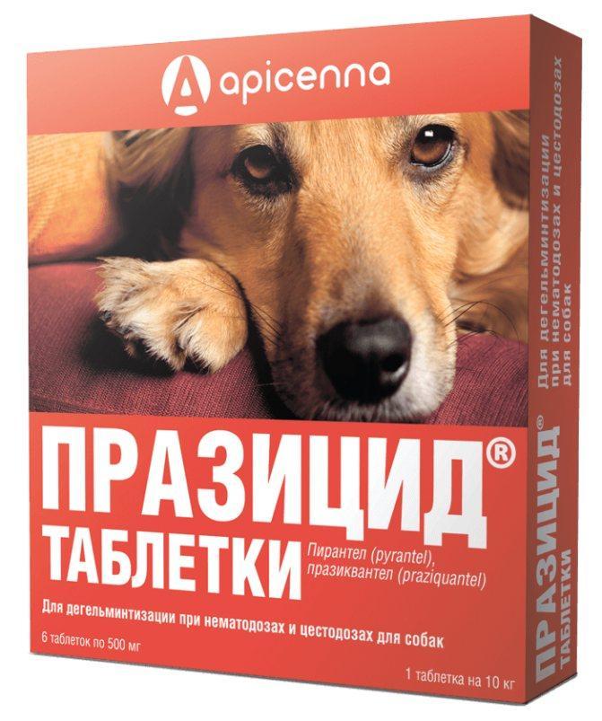 Празицид против глистов для собак в таблетках