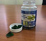 Tiny Gummy Slim мармелад для похудения, фото 9