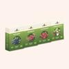 Домашняя ягодница малина, черника, клубника, земляника