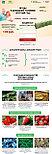 Домашняя ягодница малина, черника, клубника, земляника, фото 2