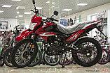 Мотоцикл ЗИД, фото 2