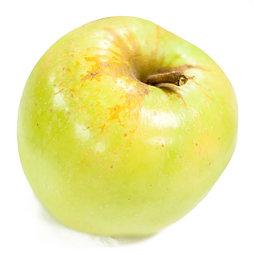 """Яблоня """"Золотое превосходное"""""""