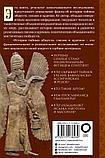 Шустер Г.: История тайных обществ, союзов и орденов, фото 3