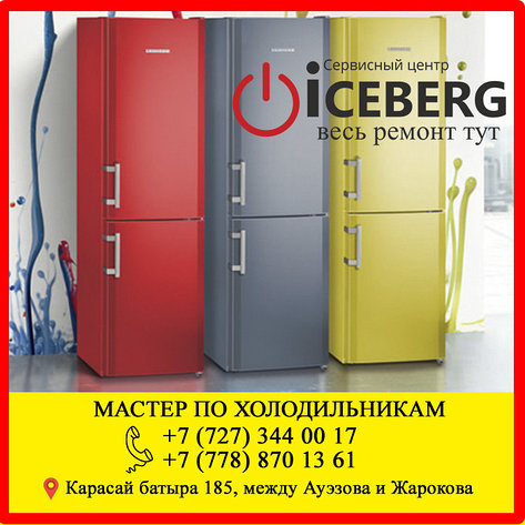 Ремонт холодильника Либхер, Liebherr Алматы, фото 2