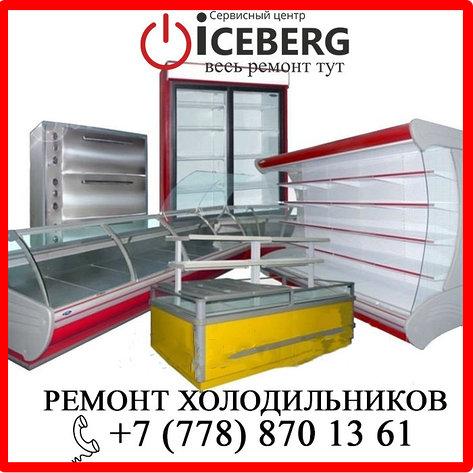 Замена компрессора на дому холодильника Алматы Либхер, Liebherr, фото 2