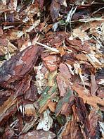 Мульча, кора лиственницы и сосны